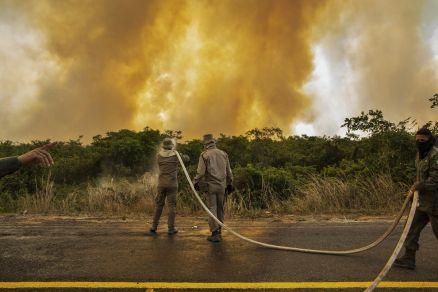 Recorde: Pantanal tem maior número mensal de incêndios na história